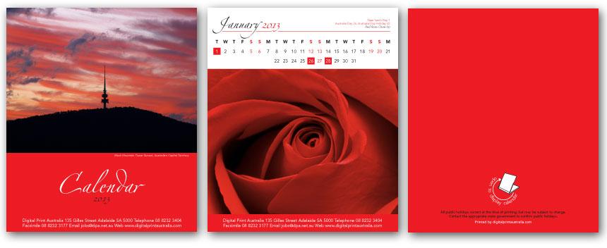 DS1-Red.jpg