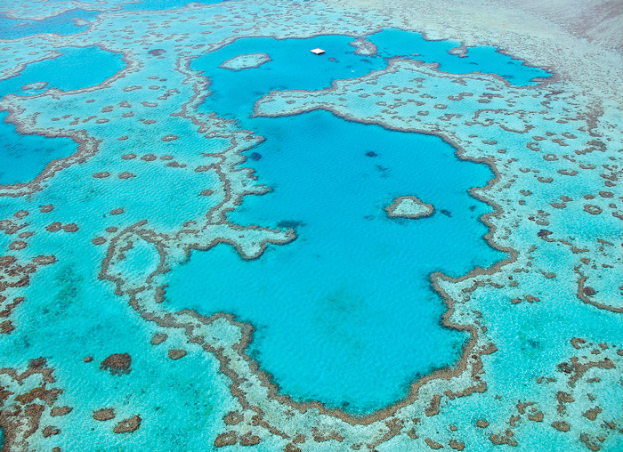 QLD_Heart-Reef-aerial-view.jpg