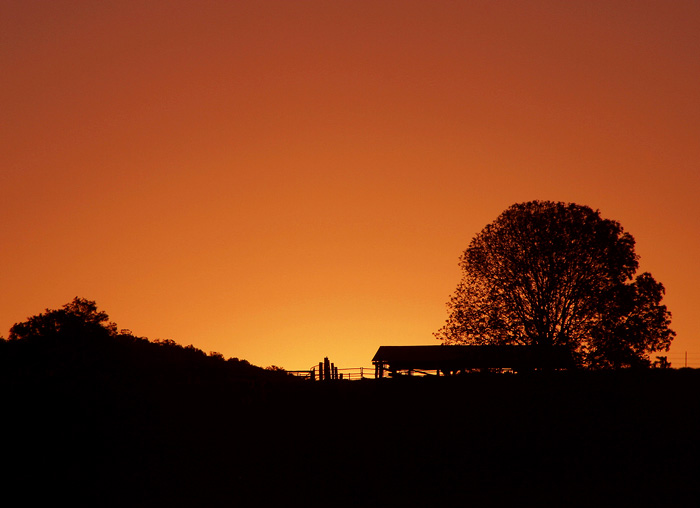 QLD_Rural-Sunset.jpg