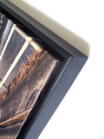 Captivating Framed Canvas Prints